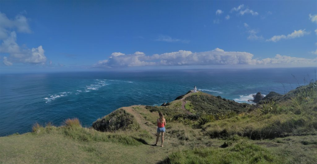 NZ cape reinga northland budget travel
